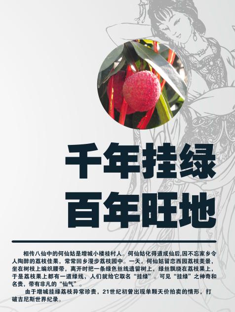 增城挂绿广场四楼餐饮区调整招商手册